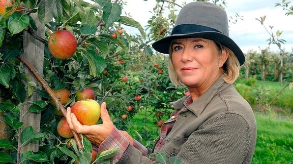 Mit viel Liebe bewirtschaftet Anna Ingstrup (Jutta Speidel) ihren alten Apfelhof.