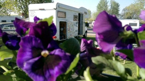 Campingplatz (Foto für die Folgen 14 bis 18 verwendbar)