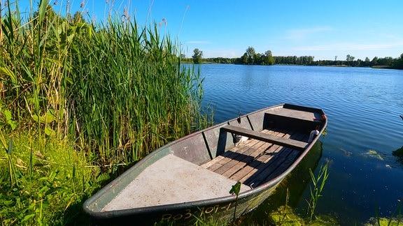 Ein Holzboot in der Havel.
