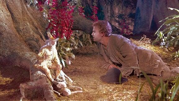 Der gute Geist des Waldes verhilft ihm zu großem Reichtum, doch damit kann Peter nicht umgehen. Er verbringt die meiste Zeit im Wirtshaus und wird wieder ein armer Mann.