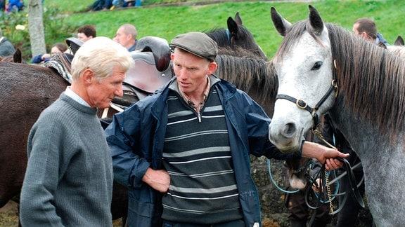 Dermot Connolly (m.) auf dem Pferdemarkt Ballinasloe.