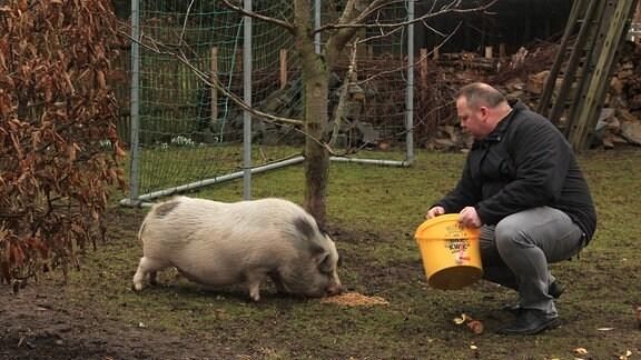 Steffen Schmidt füttert das rosa Hängebauchschwein aus einem gelben Plastikeimer mit dem Treber.