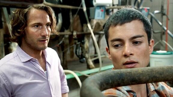 Erik (David Rott, re.) und Nico (Max Hegewald) in der Melkanlage.