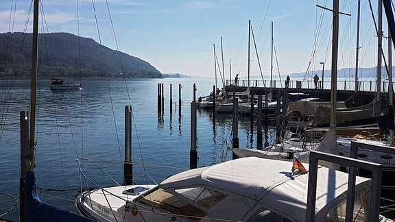 Kleine Boote liegen in einem Hafen am Bodensee.