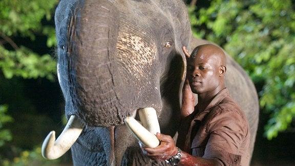 Der Elefant ist Curtie Churchs (Djimon Hounsou) Schutztier.