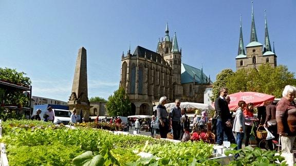 Erfurter Blumen- und Gartenmarkt