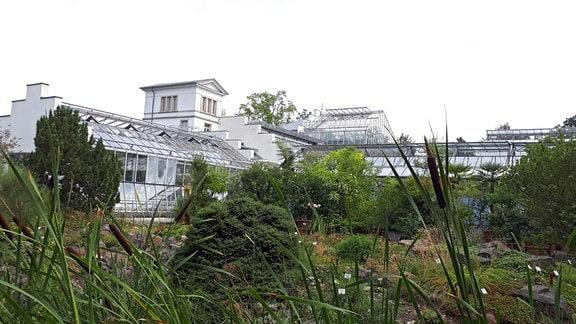 Blick auf die  sanierten und neu gebauten Gewächshäuser des Botanischen Gartens Leipzig