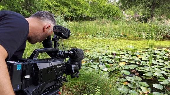 Kameramann bei Naturaufnahmen - Seerosen
