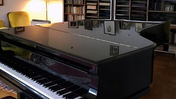 Rachmaninoff Villa SENAR