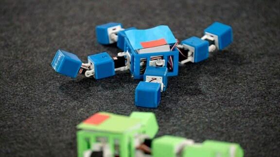 Während der Paarung tauschen die Roboter Codesequenzen, die sich wie DNA vermischt, per WiFi aus.