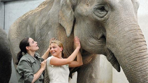 Susanne Mertens (Elisabeth Lanz, l.) und Pflegerin Anett (Anna Bertheau, r.) untersuchen das Ohr einer Elefantenkuh.