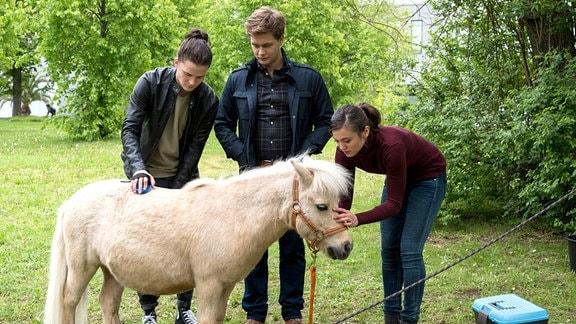 "Tom Zondek (Tilman Pörzgen, l.), Mikko Rantala (Luan Gummich, M.) und Rebecca Krieger (Milena Straube, r.) mit dem Pony ""Anke"""