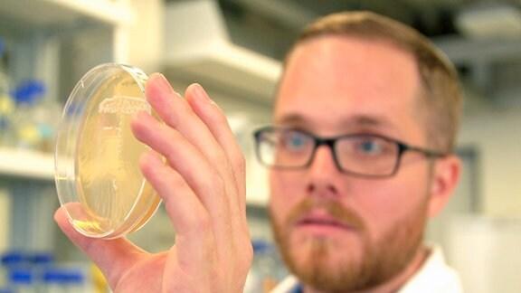 In Ihrem Labor in Zürich sind es bislang Einzeller, die eine künstliche DNA in sich tragen. Prinzipiell könnten mit dieser Methode auch komplexere Lebensformen erschaffen werden.