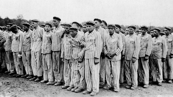 Gefangene in Häftlingskleidung (Burgenländer Roma aus dem KZ Dachau) sind anläßlich des Besuchs eines hohen SS-Führers im Konzentrationslager Buchenwald zum Appell angetreten.