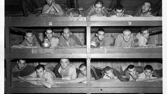 Befreite Häftlinge auf ihren Pritschen in einer Baracke des Kleinen Lagers.