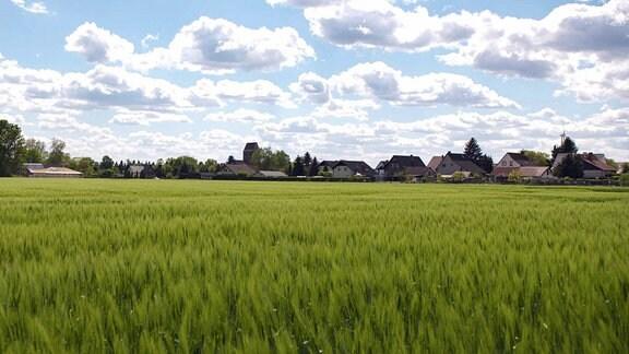 Schinne – ein kleines 350 Seelen-Dorf in der Altmark