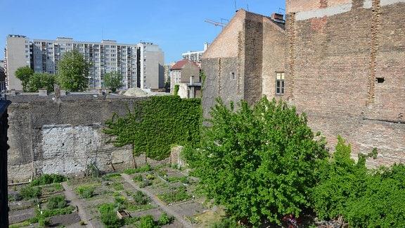 Der Leonardo-Garten in einem der ältesten und ärmsten Bezirke Budapests, der Josefstadt