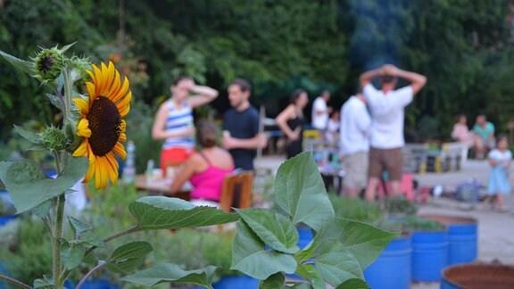 Gemeinsame Sommerabende im Leonardo-Garten