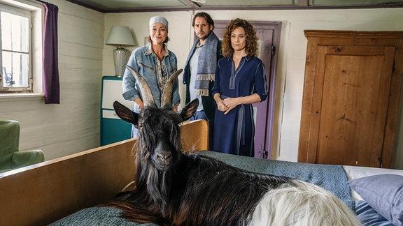 Die Ziege macht das Gästezimmer wieder zum Stall: Wirtin Sophie (Aglaia Szyszkowitz, li.), ihre Freundin Verena (Regula Grauwiller) und Jan (Alexander Beyer) staunen über den Gast im Bett.