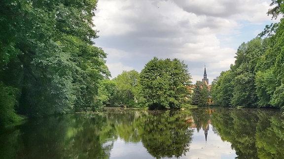 Ein großer Teich, umgeben von Bäumen.