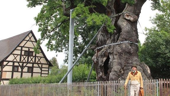 Eine gigantische Eiche neben einem Fachwerkhaus, im Vordergrund ein Mann in Kleidung des 19. Jahrhunderts.