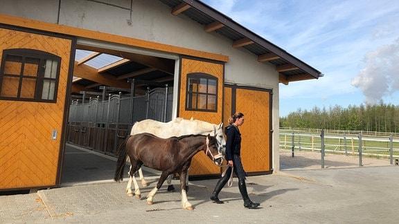 Ein neues Gestüt ist am Dorfrand von Kahnsdorf entstanden - hochmodern und mit Platz für 54 Pferde.