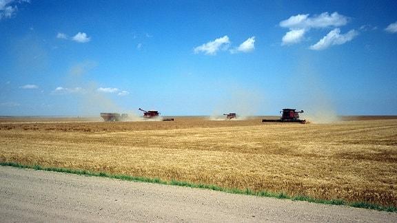 Die Great Plains – einst weites, offenes Prärieland, gelten sie heute als die Kornkammer der USA.