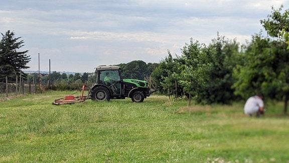 Traktorarbeiten in Obstplantage Meissen