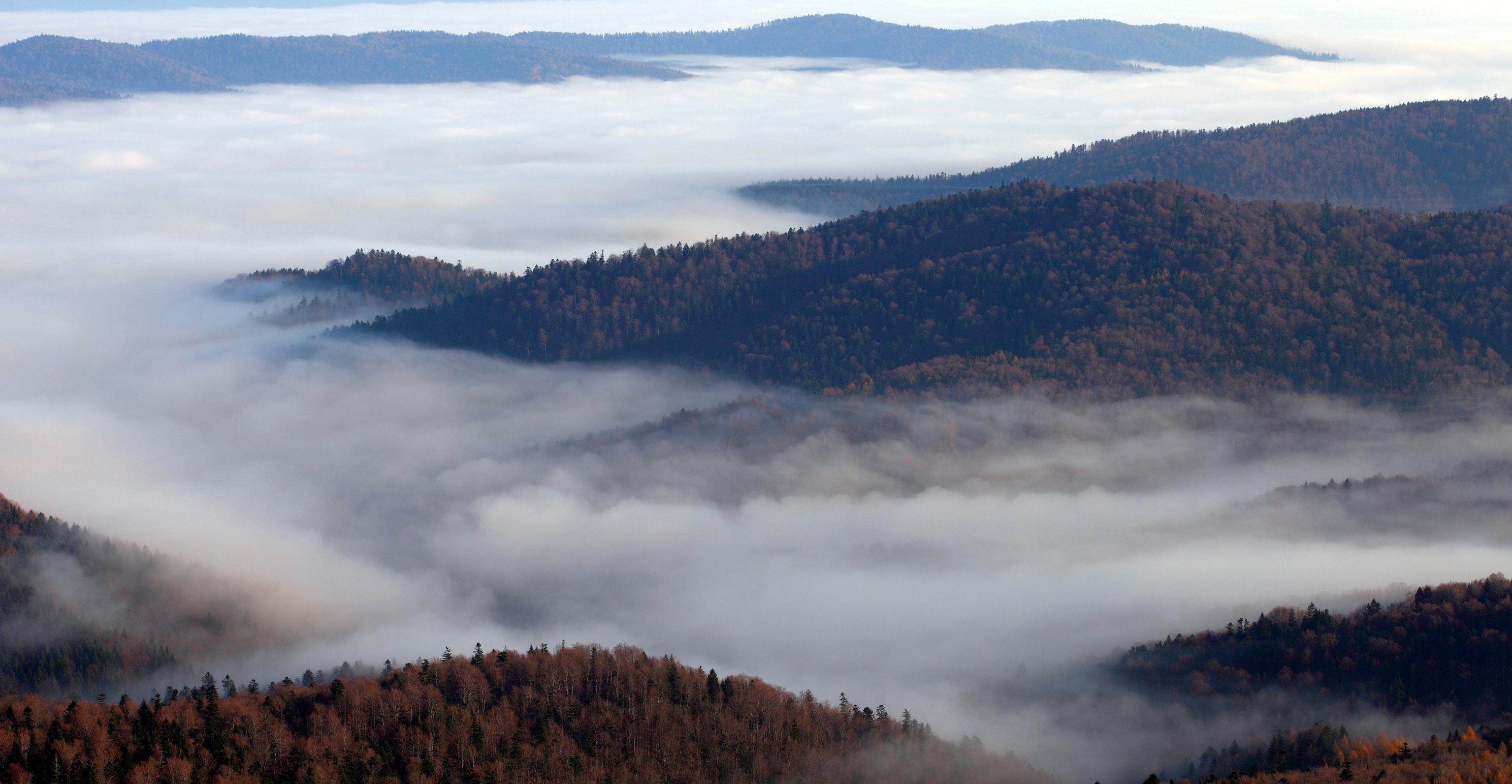Wolfsgebirge