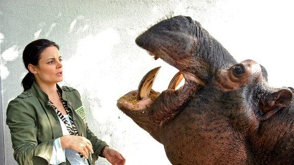 Flusspferd Fanny hat eine Erkältung. Dr. Susanne Mertens (Elisabeth Lanz) staunt, wie bereitwillig Fanny sich untersuchen lässt. Fonf Liter Hustensaft sollten genügen!