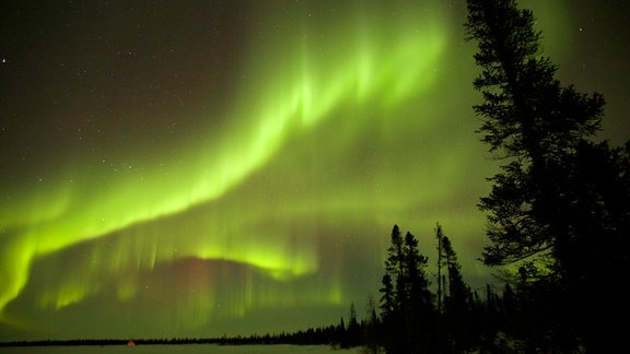 Nordlichter/Polarlichter zu sehen am nächtlichen Himmel.