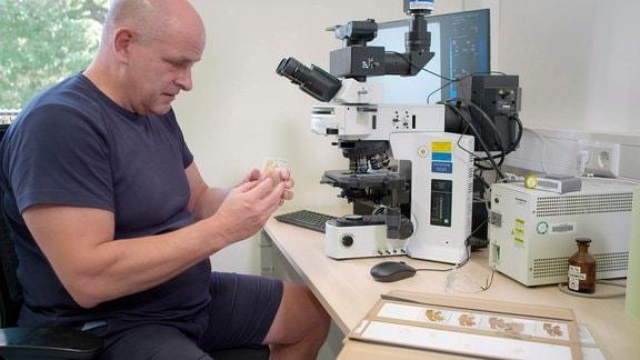 Wird Alzheimer dank Körperspenden besiegt? Prof. Ingo Bechmann (Leiter des Instituts für Anatomie der Medizinischen Fakultät Leipzig und Immunologe) entschlüsselt an Tausenden Hirnpräparaten die Mechanismen der Demenz.
