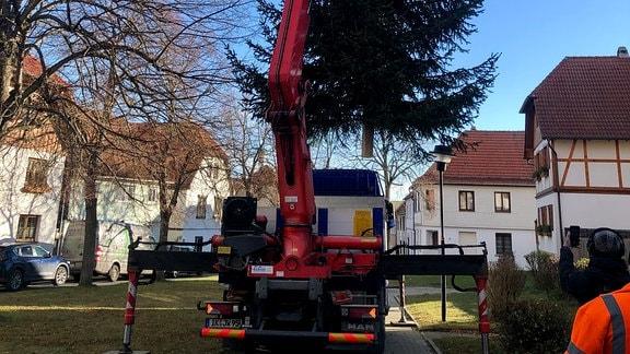Ein Baum aus Geschwenda – für Geschwenda. Erstmals an diesem Ort – mitten im Ort.