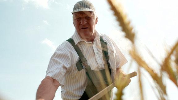 Opa Jürgen Lenz bei einer ganz traditionellen Arbeit – das Baumaterial für die Erntekrone des Dorfes wird geschnitten.