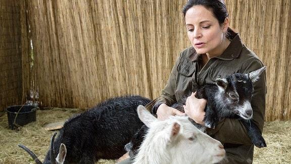Esel Eddys Futterboykott stellt Dr. Susanne Mertens (Elisabeth Lanz) vor ein Rätsel. Erst durch Anetts Bemerkung kommt sie darauf, dass der Esel unter Liebeskummer leidet, weil er Freundin Lilly, eine frischgebackene Ziegenmutti, vermisst.