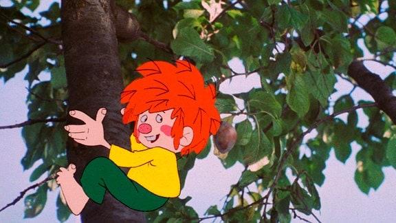 Pumuckl klettert auf einen Baum