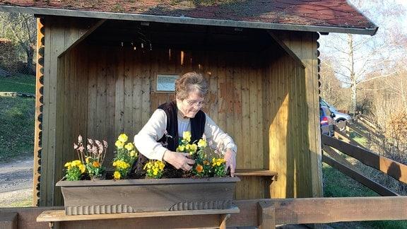 Sieglinde Memmler ist die Seniorchefin einer von zwei Gärtnereien. Damit es im Ort frühlingsfrisch  aussieht, sponsert sie jede Menge Blumen und bepflanzt auch eigenhändig Kästen und Tröge.