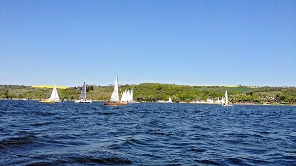 Boote auf dem Süßen See.