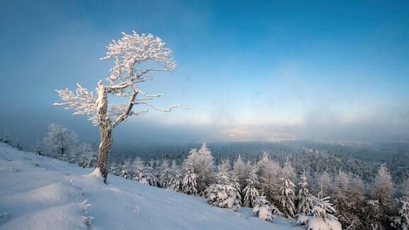 Winterlandschaft Erzgebirge in Tschechien