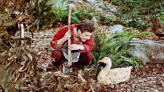 Zum Lohn für eine gute Tat findet der Schusterjunge Klaus beim Holzhacken im Walde eine goldene Gans.