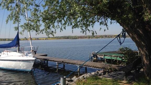 Baden, Segeln, Grillen, Angeln – alles ist möglich am 4,8 km langen und 800 m breiten Süßen See.