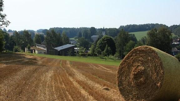 Die Felder rund um Beiersdorf sind abgeerntet. Das ganze Wochenende über ratterten die Mähdrescher bis spät abends und nutzen die hochsommerlichen Temperaturen.