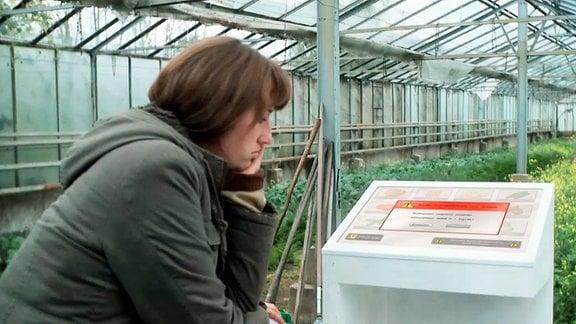 Frau in Treibhaus