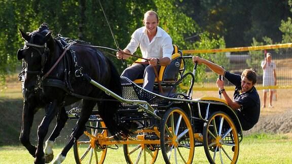 Kleines Pferdegespann im Wettbewerb
