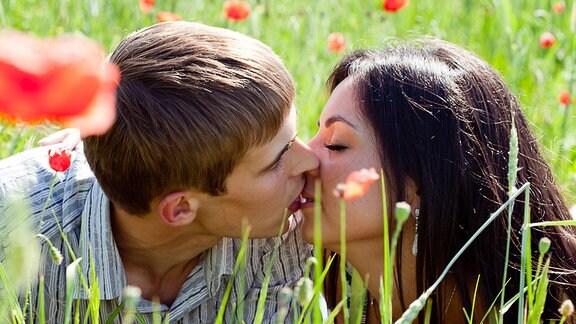 Küssen im Feld