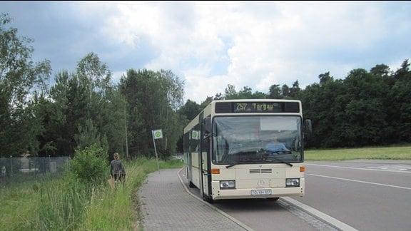 Bei der Montessori Schule in Torgau gab es Probleme mit der Busanbindung. Entweder waren die Schüler anderthalb Stunden zu früh da, oder sie nahmen einen späteren Bus bei dem die Kinder neben einer Hauptstraße auf einem Trampelpfad zur Schule laufen mussten.  Inzwischen wurde eine extra Buslinie eingeführt, mit der die Schüler nicht nur pünktlich, sondern auch sicher zum Unterricht kommen.