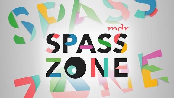Logo Spasszone
