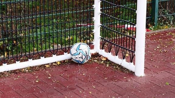 Ein Ball liegt in einem Tor