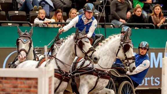 Siglavy Capriola Beni Leipzig - Partner Pferd 2020