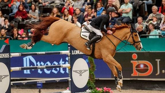Ein Reiter springt mit seinem Pferd über ein Hindernis.
